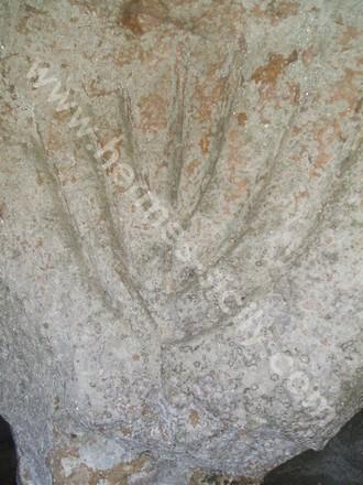 Noto Antica, candelabro ebraico inciso nella Grotta del Carciofo