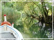 In barca sul fiume Ciane