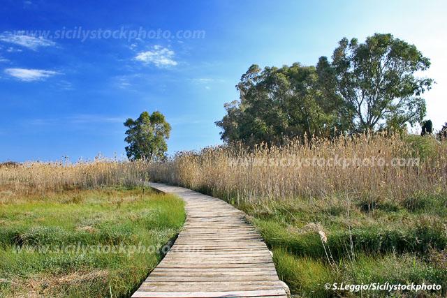 Uno dei sentieri che attraversa l'oasi di Vendicari